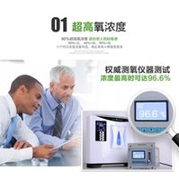 Wholesale Home Oxygen Machine Portable Home Oxygen Concentrator Affordable Oxygen Therapy Equipment Portable Oxygen Concentrator Generator DT B