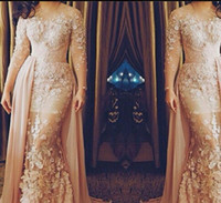 Wholesale Elie Saab Evening Dresses Plus Size Mother Dresses with Long Sleeves Illusion Neckline Champagne Evening Gowns Long Red Carpet Dresses