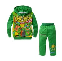 Cheap boys tracksuit turtles pattern hoodie + pants suit children Ninja Turtles cartoon suits spring autumn kids clothes sets YY20147