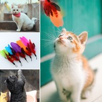 Wholesale Colorful Quality Fishing Pet REFILLS For Bird Feather Wand Cat Toy Toys
