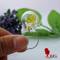 apothecary - 20MM Glass Globe Rings apothecary bottle jewelry supplies