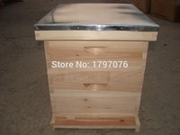 Wholesale New Standard Wooden Beehive Box Bee House Home for Apiculture Beekeeping Base Inportant Tools