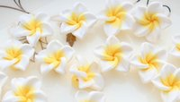 Wholesale 150pcs White Fimo Polymer Clay Plumeria Flower Beads mm medium size hand made poly floral beads