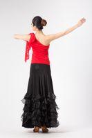 ballroom dance practice wear - Ballroom Standard Rhythm Chacha Tango Practice Dance Wear Skirt Black Brown Red Orange M L XL