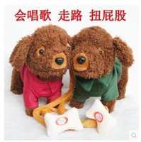 Wholesale Electric dog leash plush toy dogs music machinery remote dog walking electronic pet toys for children