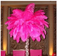Wholesale White Ostrich Feather Plume AAA quality for wedding centerpieces table decoration