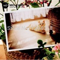Wholesale 30Pcs Different Style Boxed Personalized Cute Cats Greeting Cards Creative DIY Postcard Gift