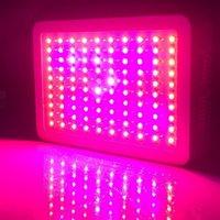Wholesale 300W Epistar W LED Band Full Spectrum LED Grow Lights Red Blue White UV IR Led Plant Growing Lighting Lamps