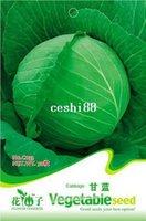 c033 - 1 Pack Seed Cabbage Seeds Brassica Oleracea Organic Vegetable Hot C033