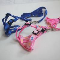 Wholesale Clearance Sale Harness Leash for Pet Dog Cat Pet Accessories Cat Chest Strap Pet supplies Fast Shipment