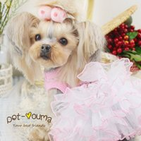 accessories beauty shops - Kawaii Pet Shop Pettiskirt Rose Lovers Beauty Dog Clothes Dog Dress Clothes for Dogs Maltese Yorkshire Chiwawa Spring CLP06