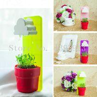 Wholesale Piece Rainy Wall hung Flowerpot With A Cloud Shaped Water Filter Pot Seeds Soil For DIY Home Garden Decor