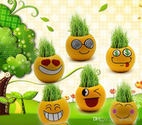 Wholesale 500PCS LJJHH751 QQ Emoji expression mini plants magic grass planting bonsai green plants potted gift Flower Seeds