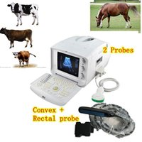 Wholesale Quality Guaranteed CE Approved Free External D Software Veterianry Ultrasound Scanne Convex rectal PROBES care your animals