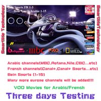 Wholesale 3 days free watching Arabic French for android tv box phone all device channels Bein Sports MBC French Canal Cine