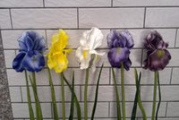 alice flower - Real touch flowers latex artificial bi Iris orchid flowers home decor Alice decor flower PU flower artificial flowERS