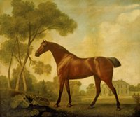 Oil Painting ballerina art paintings - George Stubbs Paintings for sale Ballerina a Bay Mare Belonging to the Earl of Clarendon Canvas Art Reproduction High Quality Handmade