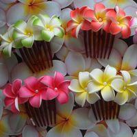 Wholesale Hawaiian foam Plumeria Flower hair claws mix color Frangipani flower hairclaw