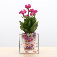 Wholesale Creative Clear Tube Plant Pot Flower Pot Decorative Self Watering Planter Fish Tank for Home Office Desk
