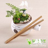 bamboo plant pots - 1Pcs Succulents moss pots indispensable tool for making micro landscape plants bamboo clip forceps straight head WG0020