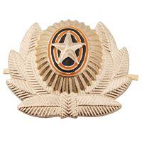 badge military - SOVIET ARMY USSR RUSSIAN MILITARY METAL CAP HAT BADGE
