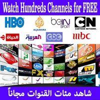 Wholesale Quad Core Arabic french IPTV Box Android arabic iptv set top box Plus HD Arabic Bein Sports MBC Canal plus Sports Channels