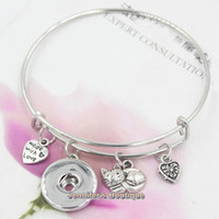 alloy bracele - New Fashion Alex and Ani DIY Interchangeable Animal Pet Cat Expandable Bangle Bracele Ginger Snaps Bracelets Jewelry