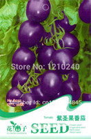 Wholesale New Bag Purple Tomato Seed Pack Vegetable Seeds Natural Garden Decor Balcony Plants Diy