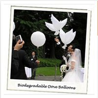 best white coat - 2014 best sell cm biodegradable Wedding decoration white dove balloon peace bird balloon pigeons helium balloons C1478