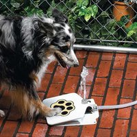 Wholesale Outdoor Pet Dog Drinking Machine Doggie Pet Activated Water Fountain Hose Splitter Included
