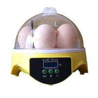 Wholesale 7 eggs incubator hatching Temperature Control Automatic Egg Turning