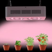 Wholesale Newest Best led grow light COB w full spectrum Hydroponics LED light lamp for indoor greenhouse veg plants growing flowering