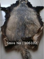 badger skins - Badger fur Badger hide badger skin good for clothes