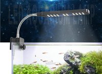 Wholesale Aquarium clip LED lamp mini water aquarium clip on four kinds of different specifications of color