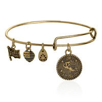 aquarius charm bracelet - Alex Ani Aquarius Antiqued Gold and Silver Charm Bangles Expandable Bracelet For Men Women Fashion Jewelry Fast Shipping AA201455