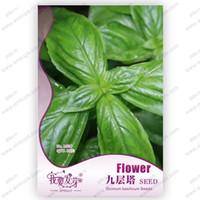basil sweet - Original packaging basil seeds sweet ocimum basilicum seeds vegetable fragrant basil seeds flower seeds