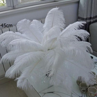 Wholesale White Ostrich Feathers cm inch Ostrich Plumage Party Decoration Dyed Plume Table Centerpieces Party Decorations Ostrich Feathers