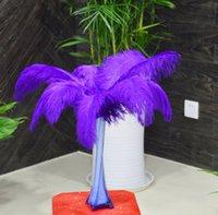 Wholesale 2015 Precious pcs25 cm10 inch Purple ostrich feathers wedding performances factory outlets