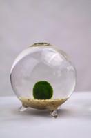 aquarium moss - Marimo Terrarium Japanese Moss Ball Aquarium Miniature Footed Bud Vase Container Home Decor Office Gift