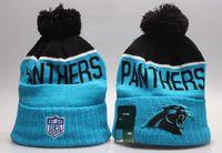 Wholesale Winter High Quality Beanie For Men Women Panthers Skullies Knit Cotton Hats HipHop Cap