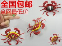 Wholesale Pull Toys Pull reptile shipping new exotic animal series inertia night market selling