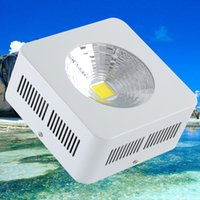 Wholesale TOP quality cob W LED high bay light Lm degree with Cob Modular Design Chip ship from USA DE warehouse