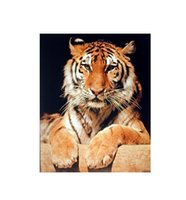 bengal pink - Wild Bengal Tiger Custom Wall Paper HD Pictures and Printings Hot posters Wall Sticker office home decor U1