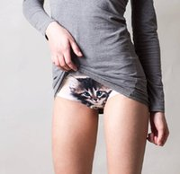 sexy pussy - Newest Hot Panties Ladies Underwear D Pussy Cat Women Panties Sexy Prevent Expose Seamless Meryl Panty Lingerie