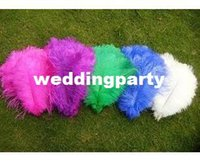 Wholesale 200pcs inch Ostrich Feather Plume mix colour For wedding centerpiece
