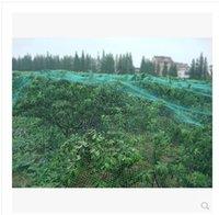 anti bird protection net - Orchard anti bird protection net m