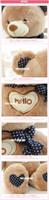 Wholesale bag pp cotton us popular cm accompany sleep hello bear baby plush doll girl couples birthday gift toy