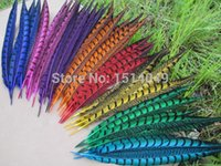 chicken wings - high quality natural cover chicken wing cm inch Variety of decorative colors diy