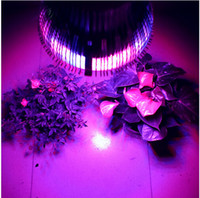 Wholesale Full Spectrum E27 W Led Grow light Red Blue Indoor grow box Hydroponic Systems lamps for plants led aquarium grow tent