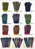 Wholesale 10pcs quot cm Multi Colors Dyed Ringneck Pheasant Tail Feathers For Craft Supplies Z120